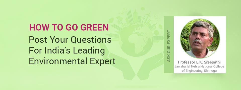 Ask Our Experts: How to Go Green