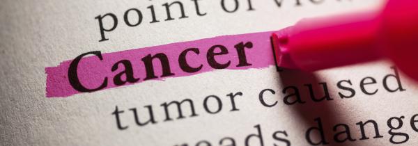 I am a Cancer Survivor and Fighter